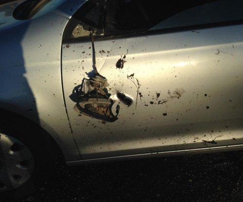 Elk charges Wisconsin hunter's car, puts hole in the door