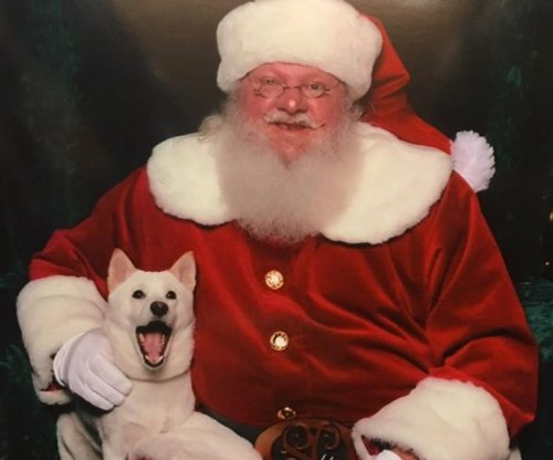 Dog obsessed with Santa Claus chew toy meets the man himself