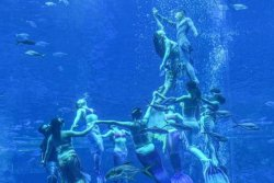 110 mermaid divers put on underwater show for Guinness record