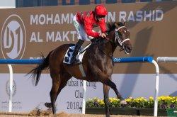 UPI Horse Racing Roundup: Gunmetal Gray, Moshaher and Bellafina shine