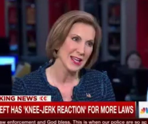 Fiorina: Those on terror watch list should still be able to buy guns