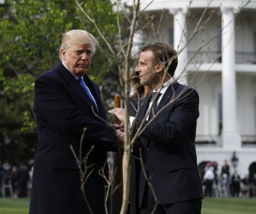 Tree planted by Trump, Macron disappears from White House lawn