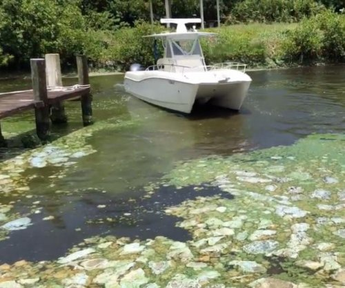Army Corps to reduce flow from Florida lake fueling algae blooms