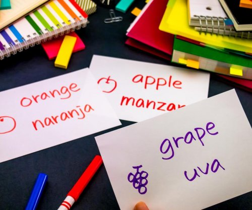 Study: Short-term language learning boosts cognitive agility