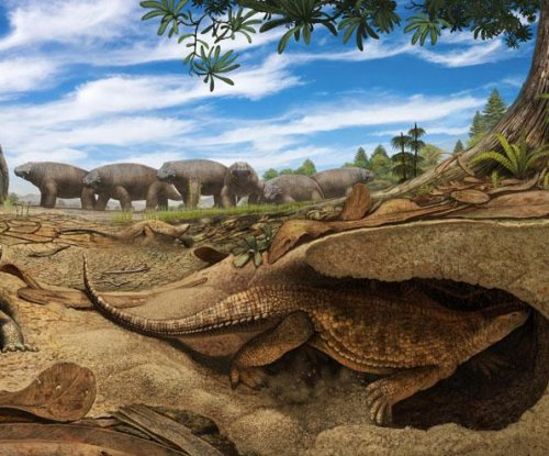 Study reveals origins of the turtle shell