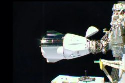 SpaceX's Resilience capsule docks with space station