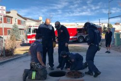 Cat rescued after one day trapped in Colorado sewer