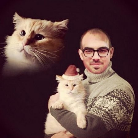 Joe Jonas shares Mena Suvari-inspired Christmas card