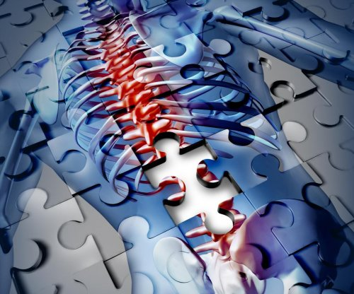 Spinal cord injuries in mice treated with neuron transplants
