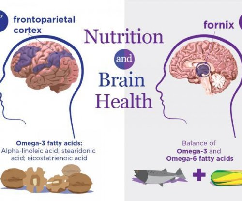 Omega-3, omega-6 fatty acids linked to healthy brain aging