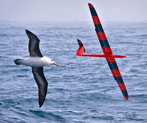 Researchers train gliders to ride warm air currents just like birds