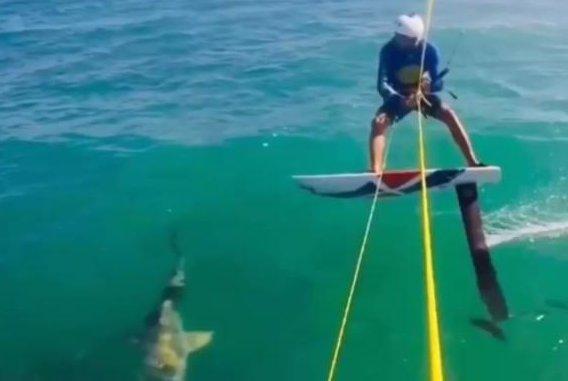 d4a11e5d9f78 Watch  Kite surfer crashes into shark off Dominican Republic - UPI.com