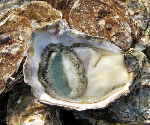 Study quantifies economic costs of ocean acidification