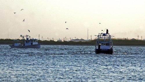 U.S. Gulf restoration draft unveiled