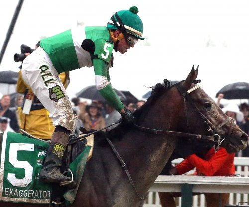 Belmont Stakes: Post positions and odds for large field of horses