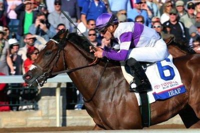 UPI horse racing roundup: Irish War Cry, Irap, Gormley advance