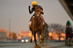 Brooklyn Strong enters Kentucky Derby picture