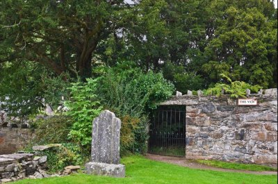After 5,000 years, Britain's Fortingall Yew is turning female