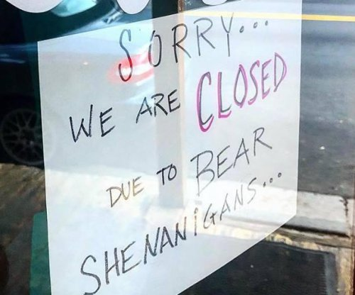 Colorado cafe closed 'due to bear shenanigans'