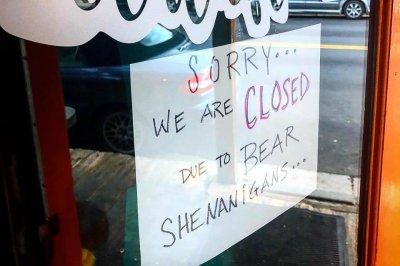 Colorado cafe closed 'due to bear shenanigans'