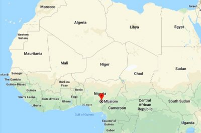 At least 16 people killed in attack on Nigerian church