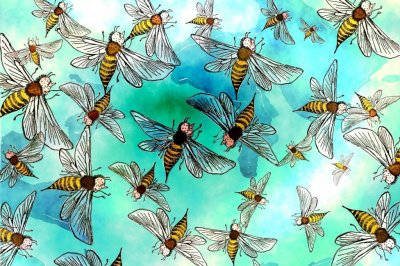 Radar reveals that male bees gather in certain locations to mate with queens