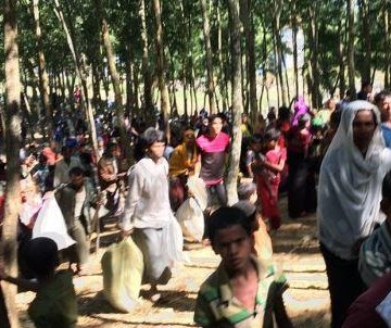 Myanmar government accused of ethnic cleansing of Rohingya Muslims