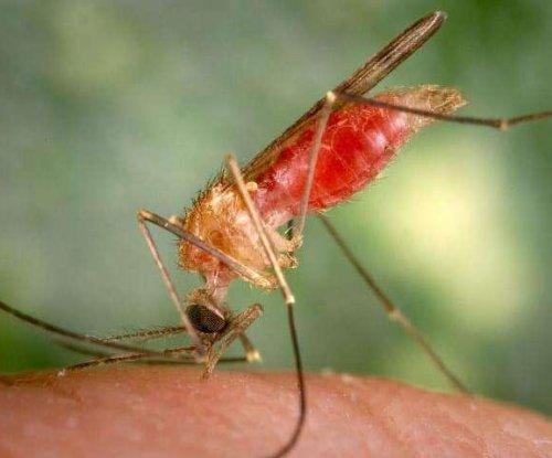 Purdue researcher: We shouldn't eliminate mosquitoes