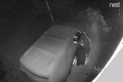 Bear breaks into snow-covered Colorado car