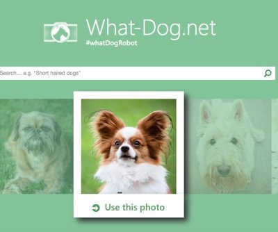 Microsoft matches human faces to dogs with What-Dog.net