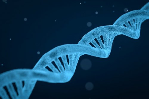 Researchers identify 'gene signatures' in metastatic prostate cancer