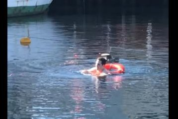 Man jumps into harbor to rescue seagull from drowning