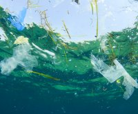 New model predicts how plastic from coast gets to middle of ocean