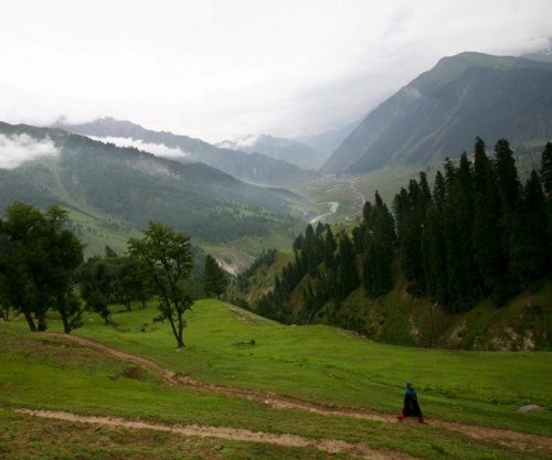 Pakistan plants 1 billionth tree to help reverse deforestation