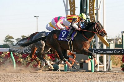 UPI Horse Racing Roundup: Sharp Azteca wins Cigar Mile, Gold Dream wins Champions Cup