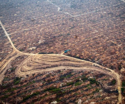 Land degradation threatens millions, according to first-ever land health report