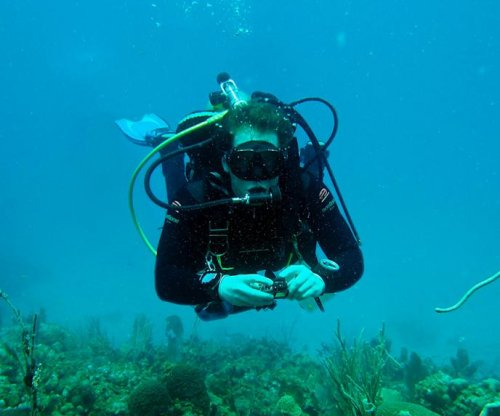 Marine scientists listen to the sounds coral reefs