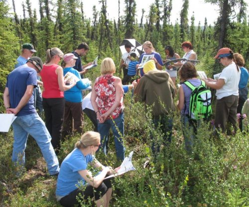 Scientists are recruiting Alaskans to help them track berry patches