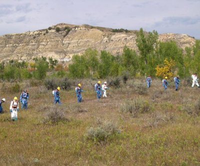 Herbicides used widely on federal, tribal wildlands, study says