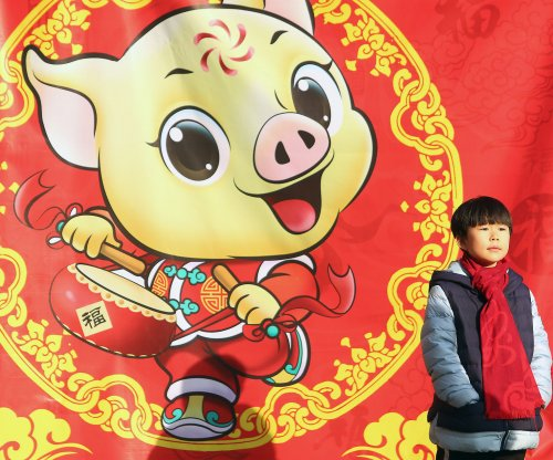 Pig in China that survived 2008 Sichuan earthquake dies