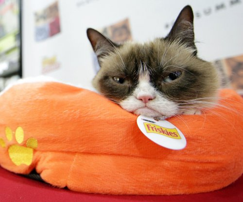 Grumpy Cat awarded $710,001 in copyright lawsuit