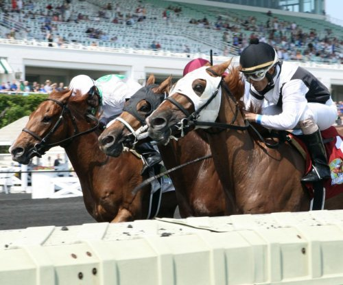 UPI Horse Racing Roundup: Pavel, Blue Prize and Oscar Performance shine