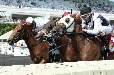 UPI Horse Racing Roundup: Pavel, Blue Prize and Oscar Performance shine