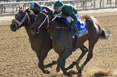 Upsets rule in weekend horse racing; Royal Ascot, Belmont Stakes next