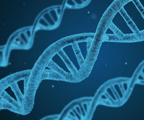 Study pinpoints type of gene regulation essential to evolution