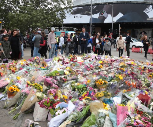 Lone-wolf attacks raise concern about new trend in terror