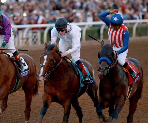 California Chrome and Bayern finalists for 2014 Horse of the Year