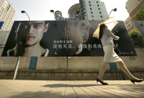 Yao Ming working to save elephants and rhinos
