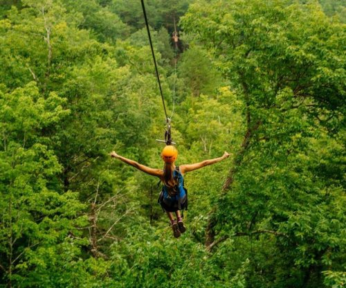 More than 500 sickened at Tennessee zipline destination