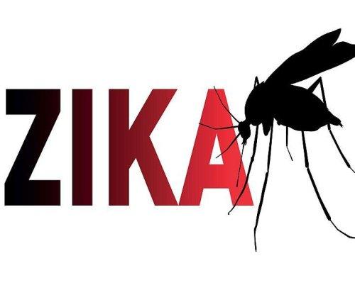 CDC advises pregnant women to avoid Zika-hit Texas town